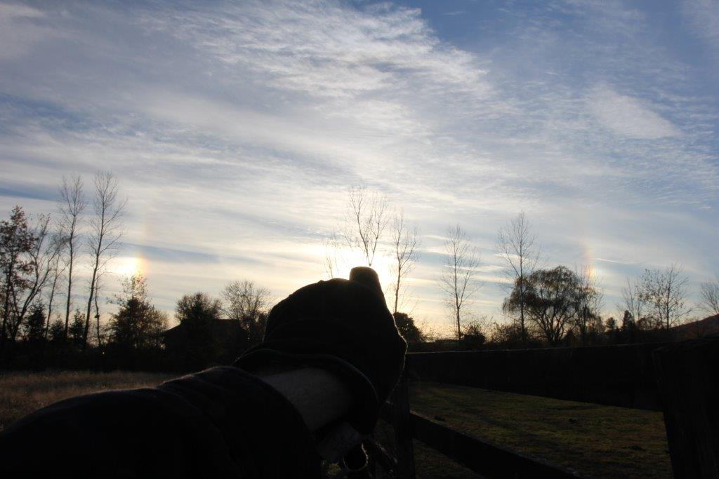 Late Autumn Sun and Two Sun Dogs  (c) 2013 Robert Goldwitz